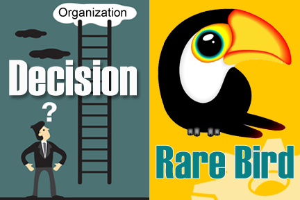 business organization implementation