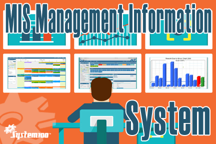 MIS Management Information System Software